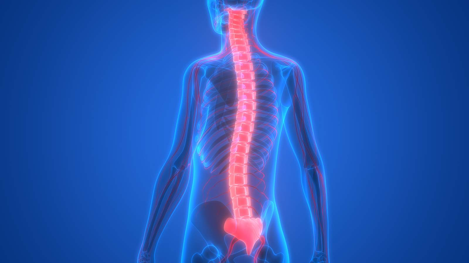 The Ongoing Costs Of Spinal Cord Injuries